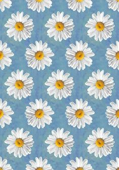 Imagine flowers, wallpaper, and daisy Daisy Wallpaper, Iphone Background Wallpaper, Pastel Wallpaper, Blue Wallpapers, Pretty Wallpapers, Tumblr Wallpaper, Daisy Background, Cute Backgrounds, Aesthetic Backgrounds