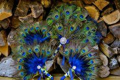 Peacock Bouquets by Eellevee, via Flickr