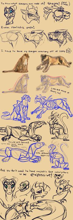 [Tutorial] How I Draw Dragons! Early 2018 Edition by Mollish on DeviantArt : [Tutorial] How I Draw Dragons! Early 2018 Edition by Mollish on Cartoon Drawings, Animal Drawings, Dragon Mythology, Really Cool Drawings, Wings Of Fire Dragons, Monster Drawing, Body Sketches, Dragon Artwork, Art Prompts