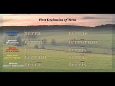 Henle Latin 1st and 2nd Declensions
