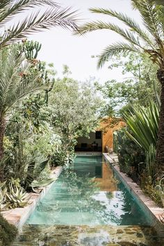 Private plunge pool - chic and tropical design