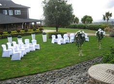 Wedding Locations, Wedding Venues, Wedding New Zealand, Mount Maunganui, Plan My Wedding, Dream Job, Garden Wedding, Bliss, Dolores Park
