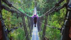 The swing bridge across the Huon River at the Tahune Airwalk in southern Tasmania, thanks to Rising almost 50 metres into the… Tasmania Road Trip, Tasmania Travel, The Places Youll Go, Great Places, Places To See, Australia Travel, Queensland Australia, Western Australia, Travel Around
