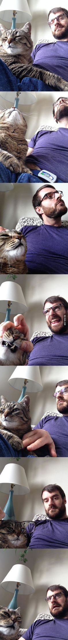 My wife is stuck at work today, so me and the cat texted her some selfies.