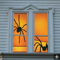 Shady Spiders Double Window Poster