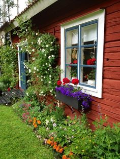 rabatt torp I love all the colors - Sweden! Cottage Garden, Window Box, Swedish Cottage, Garden Windows, Beautiful Flowers, Red House, Garden Inspiration, Red Cottage, Red Houses