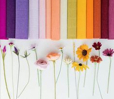 Сочетания цветов по номерам гофры Tissue Flowers, Giant Flowers, Crepe Paper Flowers, Paper Flower Backdrop, Felt Flowers, Diy Flowers, Colorful Flowers, Fabric Flowers, Paper Bouquet