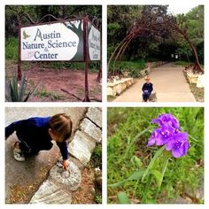 Austin Nature and Science Center: Animals, Dino Bones, and More!