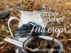 is your garden ready for Fall planting?  Get this list of crops you may want to consider adding.