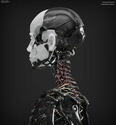 Ghost_SkeletonWork_09-07-2014_16.jpg