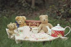 teddy bear tea party/picnic...would be cute lilttle one pic!