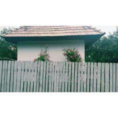 Casa cu flori.