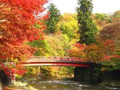 Let's Go Visit Tohoku in the Autumn! The 10 Best Autumn Leaf Viewing Spots – Aomori & Yamagata   Taiken Japan