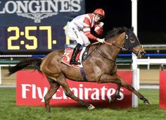 Sheikhzayedroad would likely have received a ticket on the Dubai highway for which he is named for the speed of his acceleration to win Thursday's staying feature. The bay, also a group winner in England, …