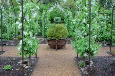 Peter Thevenot's Garden.