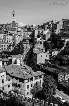Panoramica di Siena: in primo piano Via di Fontebranda. Foto di Ettore Zaffo su http://www.juzaphoto.com/