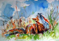 Buy Red fox resting, Watercolour by Kovács Anna Brigitta on Artfinder. Discover thousands of other original paintings, prints, sculptures and photography from independent artists.