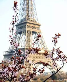paris, spring, and eiffel tower image