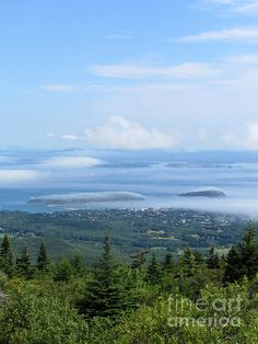 Picture Perfect- Acadia National Park