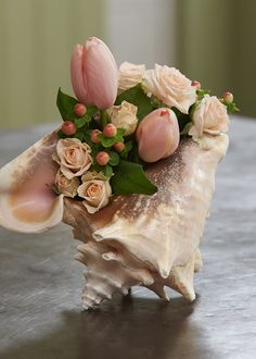 A shell can be a quick impromptu vase... fill with water and a few flowers... VIOLA... Get your own copy of Bloom 365 at www.uBloom.com/Books!