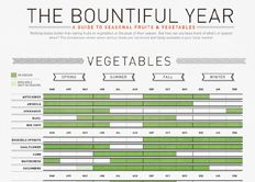 Visual News Infographic: The Bountiful Year: A Guide to Seasonal Fruits and Vegetables