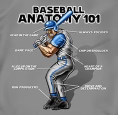 Coed Sportswear Baseball T-Shirt: Baseball Anatomy - Youth