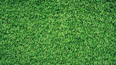 Artificial grass or synthetic turf is a kind or fake grass which is replica of natural or real grass. Previously it was used in sports stadiums but nowadays it is used in houses as well as offices. Artificial Grass Installation, Artificial Turf, Grass Background, Vector Background, Grass Field, Photoshop, Textured Wallpaper, Orange Wallpaper, Lawn
