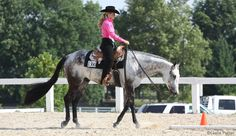 Teach your horse to become responsive to light rein and leg cues so that he is a predictable performer in the show ring.