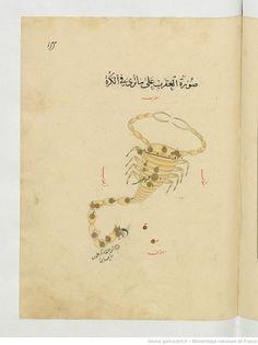 Manuscript-Astronomy Manuscript, Abd al-Raḥmān ibn ʿUmar al-Ṣūfī . Kitāb ṣuwar al-kawākib al-ṯābita,1430-1440
