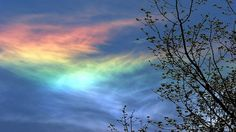 Fire Rainbows - The sun shining on ice crystals in cirrus clouds sometimes creates fire rainbows. The clouds have to be far enough up in the air for ice crystals with hexagonal plates to form, and the sun has to be shining through them at the right angle (at least fifty-eight degrees above the horizon) for its light to hit the top of these plates and be split into different colors.    - photo by Dekh