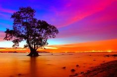 colorful-pics-18