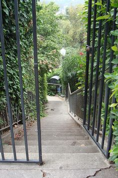 Stairs of Whitley Heights Golden Age Of Hollywood, Old Hollywood, Miss California, Rudolph Valentino, Los Angeles Neighborhoods, Hollywood Homes, Bunker Hill, Make Way, Hollywood Celebrities