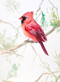Your place to buy and sell all things handmade Watercolor Bird, Watercolor Paintings, Cardinal Tattoos, Cardinal Birds, Bird Art, Beautiful Birds, Lovers Art, Painting Inspiration, Illustration Art