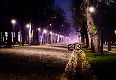 Lost in the dark by Alexandru Mahu on Central Park, Romania, Places To See, Wander, New York City, The Darkest, To Go, Lost, Night