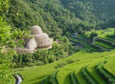 Shodoshima, Japan (小豆島之光, or the Island of Little Beans) - olive groves, wild monkeys, hot springs