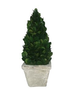Mills Floral Company Boxwood Cone 9.25' Topiary Small >>> You can get additional details at the image link.