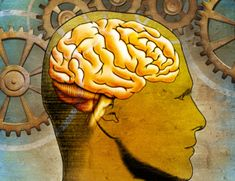 ¿Es cierto que usamos solo el 10% de nuestra capacidad cerebral? http://www.muyinteresante.es/ciencia/preguntas-respuestas/es-cierto-que-usamos-solo-el-10-de-nuestra-capacidad-cerebral-701407499471