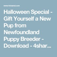 Halloween Special - Gift Yourself a New Pup from Newfoundland Puppy Breeder - Download - 4shared - Hidden Akers  Newfoundlands