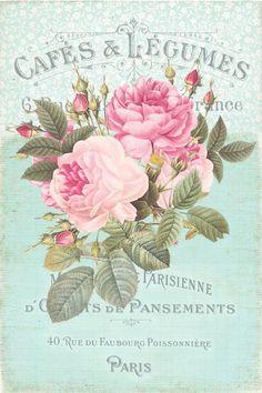 Vintage Labels, Vintage Ephemera, Vintage Cards, Vintage Paper, Vintage Images, Floral Vintage, Vintage Flowers, Vintage Prints, Vintage Posters