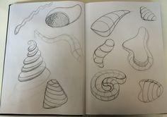 Fase 1 | Organische vormen