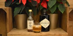 12 Days of Sweet Sally TeaCocktails � Day6  Gin and Sally   Recipe on the blog -Follow us for more unique #teacocktails! #southernicedtea #sweetsallytea #southernicedtea