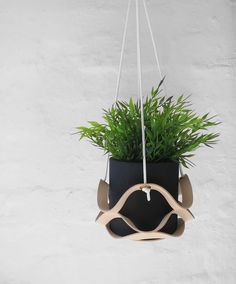 The Minimalist Home x Leather plant hangers