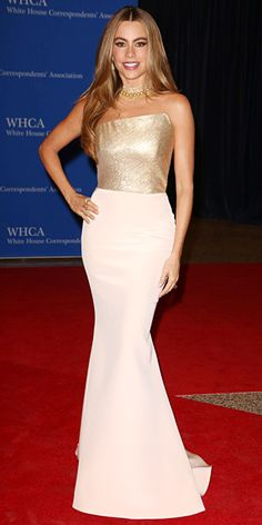 The Most Beautiful Dresses Worn to the 2014 White House Correspondents' Dinner - Sofia Vergara from #InStyle