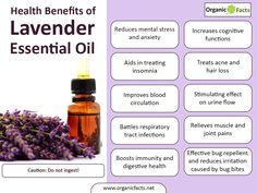 Traditionally, lavender essential oil has been used in making perfumes. It is extracted from the fragrant flowers of the lavender plant and has many health benefits and is very useful in aromatherapy. Some of the health benefits include its ability to remove nervous tension, relieve pain, disinfect scalp and skin, enhance blood circulation and treat respiratory problems.