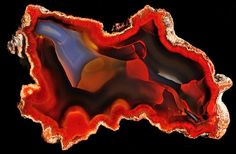 Apache Agate, Chihuahua Mexico Most awsome modern art by God Cool Rocks, Beautiful Rocks, Minerals And Gemstones, Rocks And Minerals, Mineral Stone, Rocks And Gems, Stones And Crystals, Gem Stones, Gemstone Colors