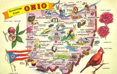 Ohio Genealogy Trails -  This seems well timed for the start of National Genealogical Society's annual conference in Cincinnati this week. #ngs2012