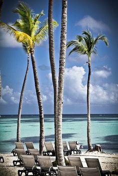 Punta Cana - Barcelo bavaro palace de luxe...Im thinking next trip