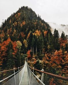 Fall Inspiration | Autumn | Fall Festivities | Fall Adventures | Sweater Weather | Cozy Nights | Blankets | Hiking | Mountains | Exploring | Leaves | Trees