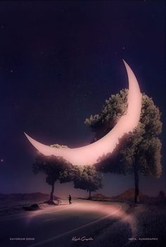 Pin by Trashinator Penny on Schöne Fotos in 2019 Beautiful Nature Wallpaper, Beautiful Moon, Beautiful Landscapes, Amazing Wallpaper, Moon Pictures, Nature Pictures, Beautiful Pictures, Moonlight Photography, Moon Photography