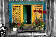 Dicas para manter a casa sem fungos | Portal Namu